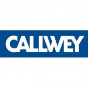 Callwey_quadratisch