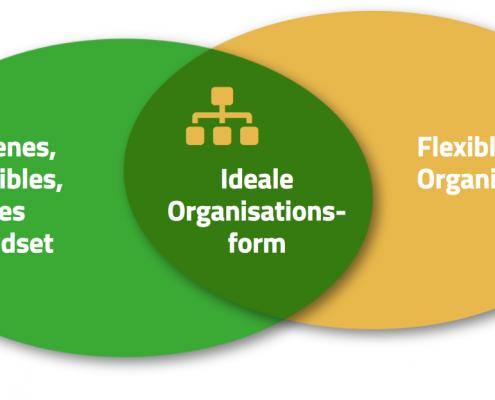 Grafik zur idealen organisation